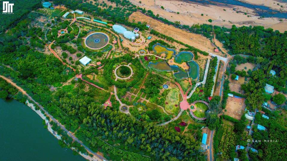 Top View Of Butterfly Park
